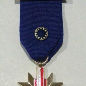Medalla EXCOMBATIENTE EUROPEO