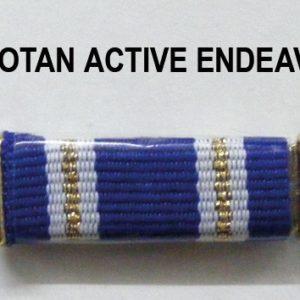 Pasador Otan Active Endeavour